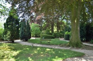 kloostertuin_beuk_liggend